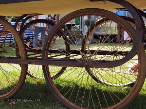 Cart wheels at Cloudy Bay Crab Shack with Skye Gyngell