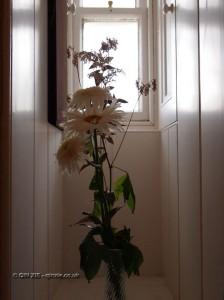 Flower arrangement at Balfour Castle
