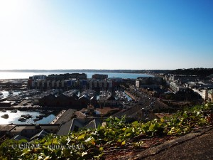 Harbour, Jersey