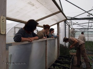Journalists in polytunnel at Riverord Organics