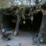 Palm worker's hut, Tunisia