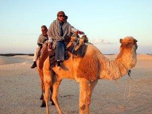 Qin Xie riding a camel, Tunisia