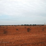 Salty terrain, Tunisia