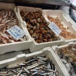 Seafood, Pescara, Abruzzo