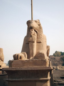 Sphinx, Karnak Temple, Luxor