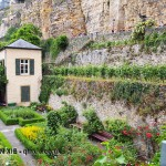 Vineyard garden, Luxembourg