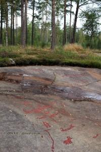Rock carvings in the woods at Vitlyke in Bohuslan, West Sweden