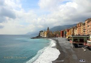 Coastline, Camogli